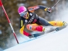 Carmichael Productions, Inc. Boulder Sports Photography Downhill Ski Racing